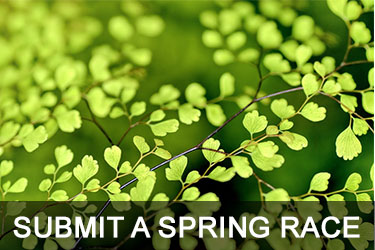 Submit a Spring Race